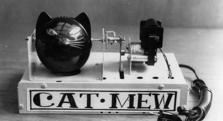 Cat mew