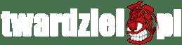 Twardziel.pl – blog dla twardych mężczyzn